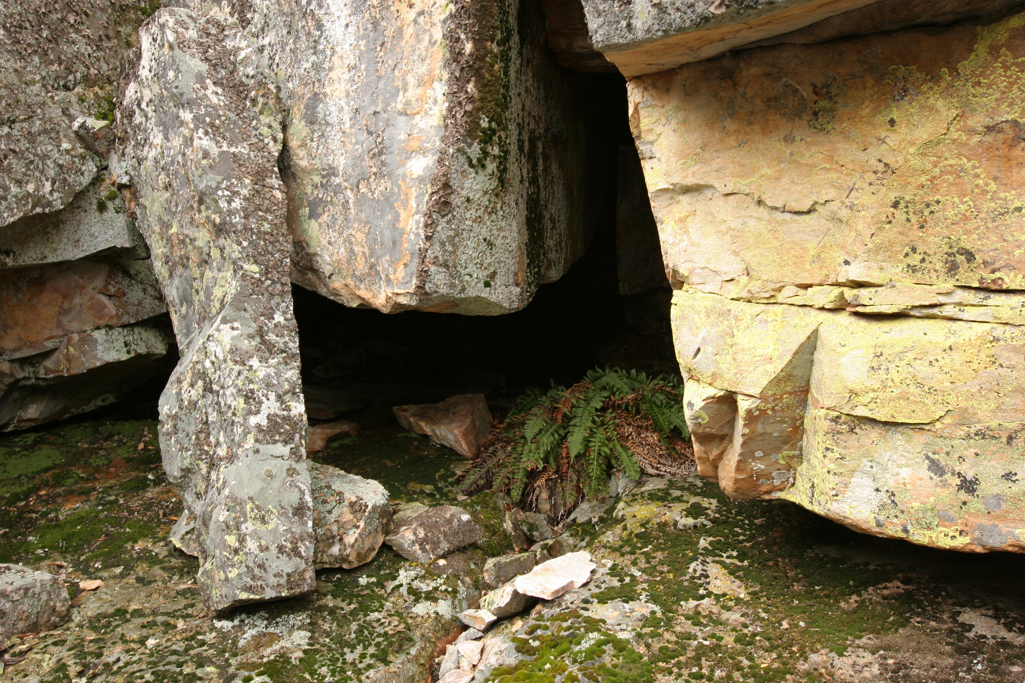 Arnold Rim Trail « Snapshots by Kats
