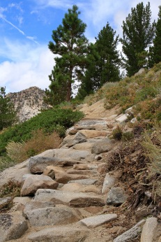 TRTA built in new steps into the trail